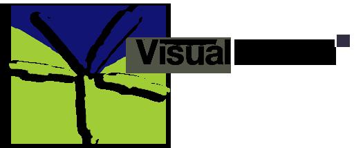 Visual Terrain